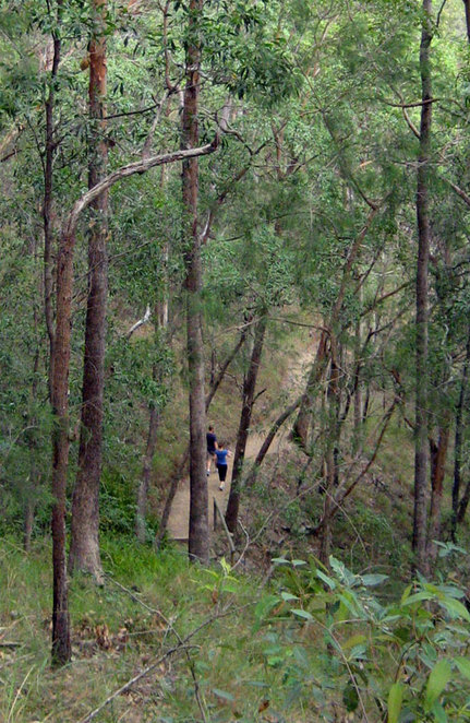Hikers on the Cockatoo Trail
