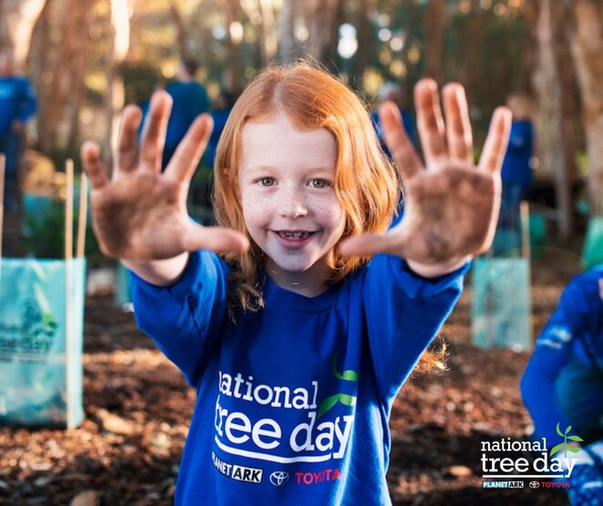 national tree day 2019, volunteers needed, help plant trees, indigenous plants to plant, community event, fun things to do, first friends of dandenong creek, free bbq, greening australia, environmental friendly, sustainability