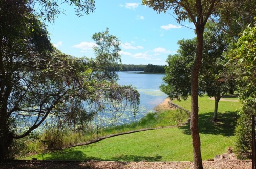 Noosa Botanic Gardens, Eight Hectares of native and exotic plant species, open-air bush chapel, statues, lily pond, picnic spots, amphitheatre, pelicans, drinking water, open 24 hours a day, free entry, pearl on the sunshine coasta