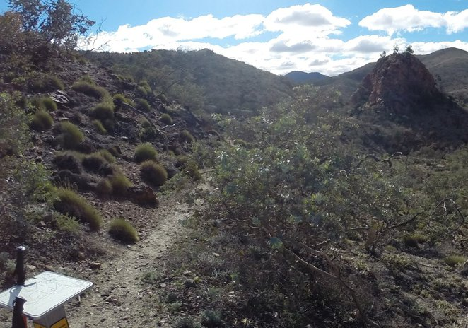 Pinnacles, Arkaroola