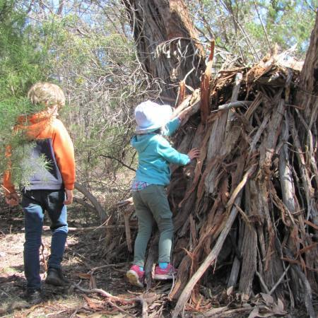 shelter building cubby house kids connect to nature wild rewild