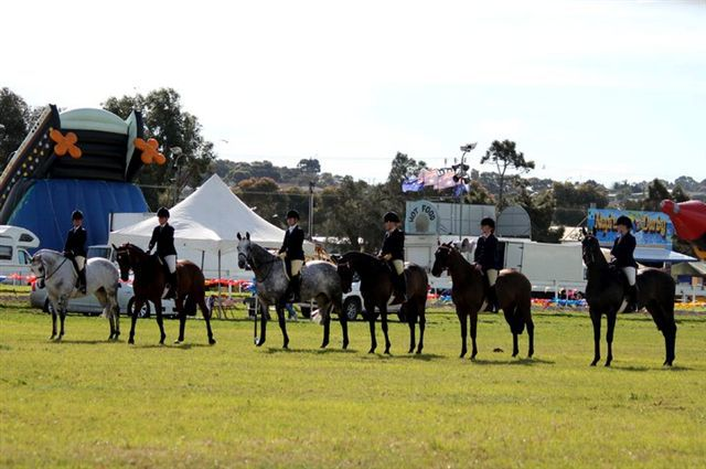 South Australian Country Shows, Crystal Brook Show, Kadina Show, Whyalla Show, Port Lincoln Show, Quorn Show, Gawler Show, Wilmington Show, Balaklava Show, Murray Bridge Show