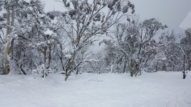 Snowy Mountains, Selwyn Snow Resort, Jindabyne, Cooma, Adaminaby, Winter 2019, Family Winter 2019, Things to do in Sydney, Sydney Winter