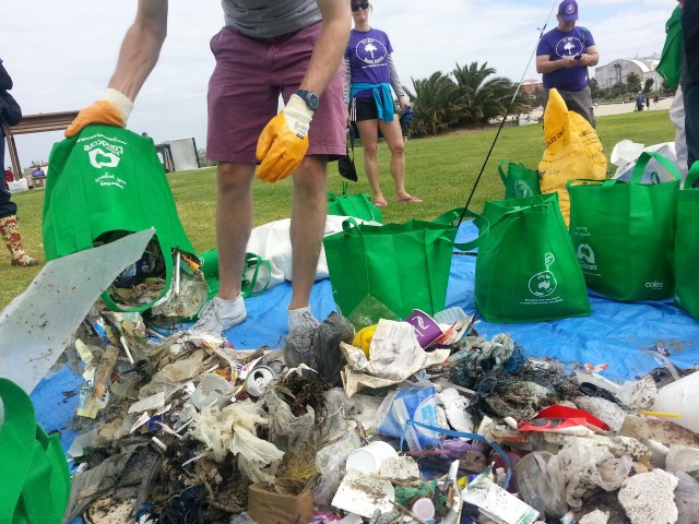 st kilda, plastic pollution, rubbish, marine pollution, beach, trash, volunteer, community,