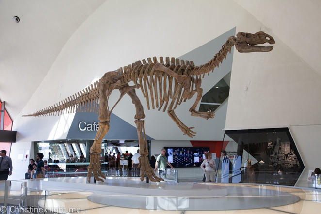 Where to find dinosaurs in Canberra
