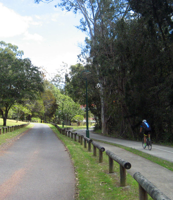 The cycle path up Mt Coot-tha has been greatly improved in recent years