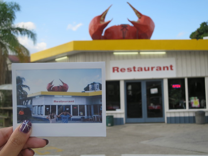 big things, australia, road trip, attraction, tourist, queensland, brisbane, cairns, miriam vale, shell, gas station, big crab, crab