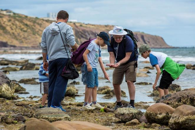 bioblitz at st kilda, bioblitz, st kilda, free, things to do, fun, kids, adelaide, discovery circle, hallett cove