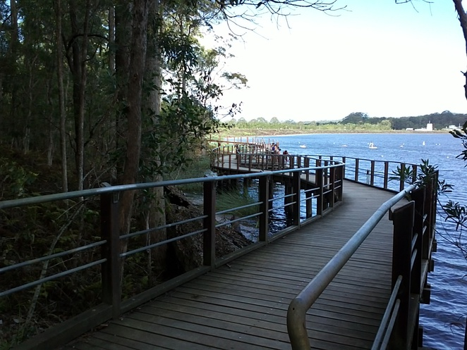 boardwalk, bush walk, tracks, bridges, trail bikes, swimming, native plants, orchids