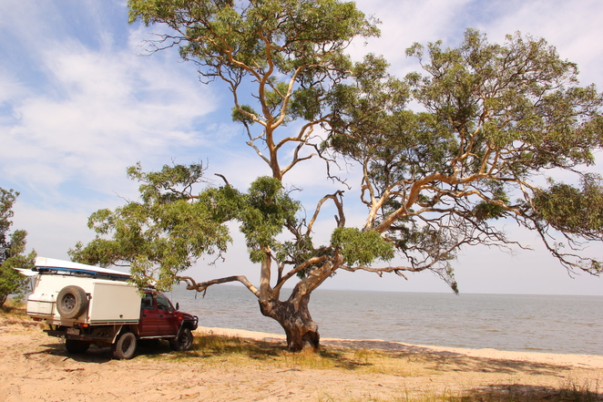 Camping around the Gippsland Lakes - sandy tracks can trap a vehicle, learn about sand driving before driving such tracks