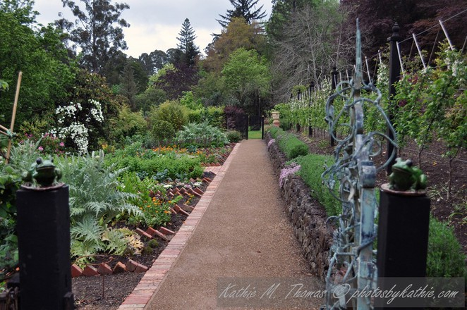 Cloudehill Vegetable Garden