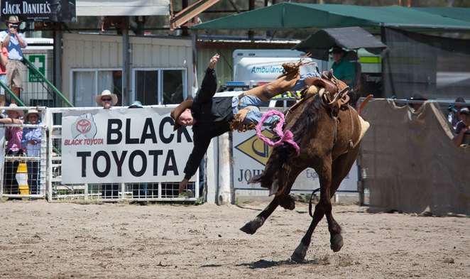 cowboy, rodeo, canungra,steve glasgow, dadfaphotography