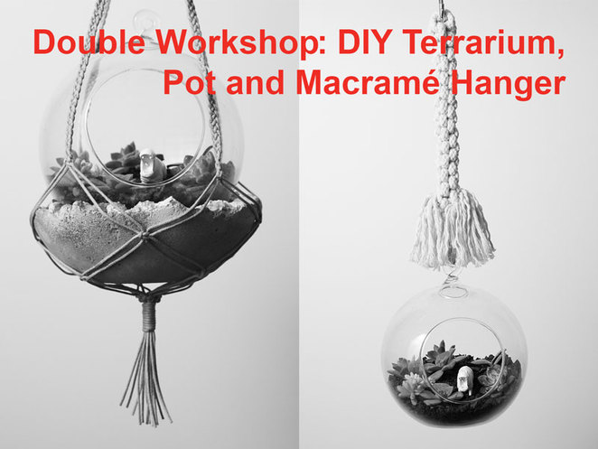 DIY Terrarium, Pot and Macramé Pot Hanger