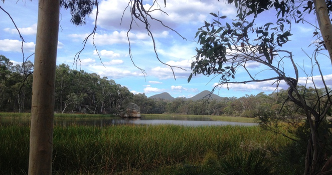 Dunns Swamp Wollemi National Park