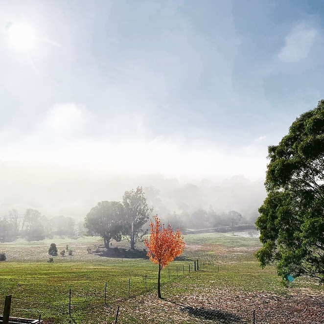 Fairy Meadow View, Autumn, farmstay, southern highlands, tablelands, relax, unwind, healing for soul and body