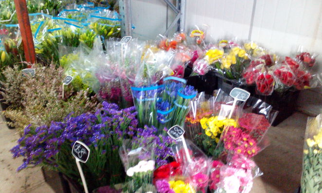 Flower Shed, Thornlands, flowers, gifts