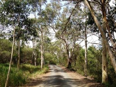 Fred Caterson Reserve