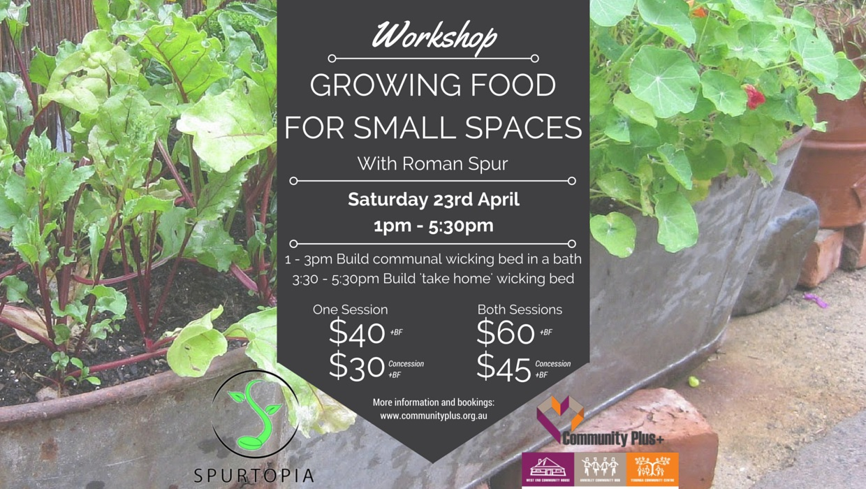 Growing Food For Small Spaces Workshop Brisbane