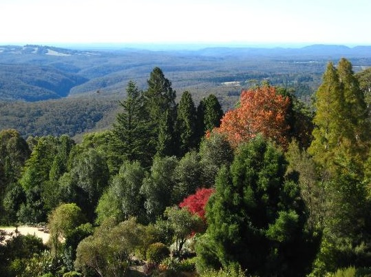Mt Tomah gardens, long lunch, Mountains view