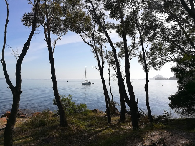 nelson bay, dutchmans beach, walk, coastal walk, bagnalls beach, walking paths, coast walk, port stephens, NSW, best walks, best short walks, easy walks, dog walking, bike riding, cycle paths, views, lookouts