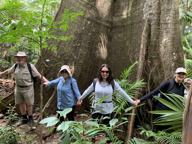 Palm Grove Section Hike in Tamborine National Park, Tamborine Mountain Queensland, Witches Falls Section Hike, The Knoll Section, Life of Spice Café Tamborine Mountain, Tamborine National Park, Joalah Section Hike, Group Hiking South East Qld And More, Rainforest, Piccabeen palms,