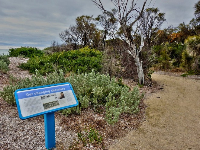 special spot on yorke peninsula, special spot, yorke peninsula, wool bay, coobowie, mount rat, the pines, warooka, point turton, walk the yorke