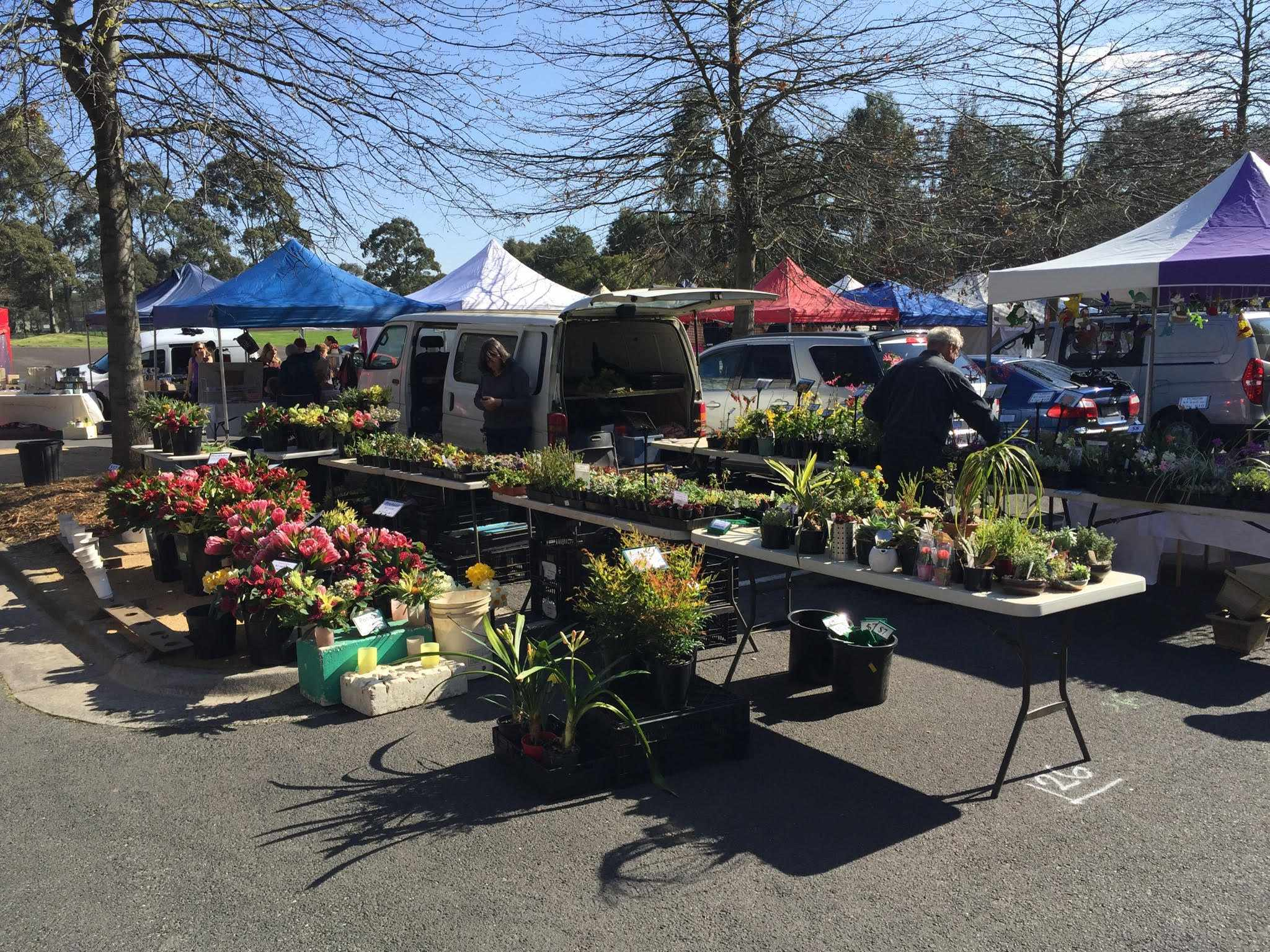 Free upwey grass roots market melbourne for The perfect vegetable garden