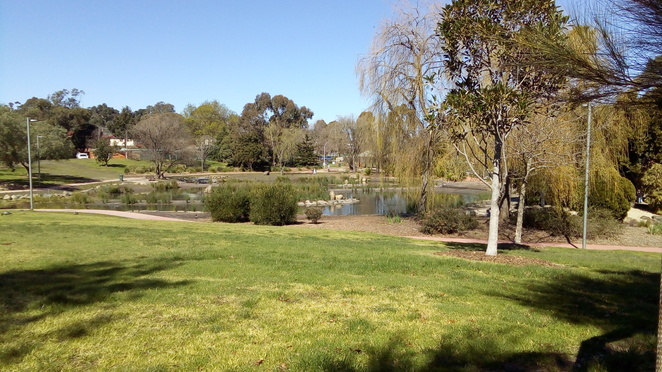 Tim Neville Arboretum, park, ferntree gully, knox city council