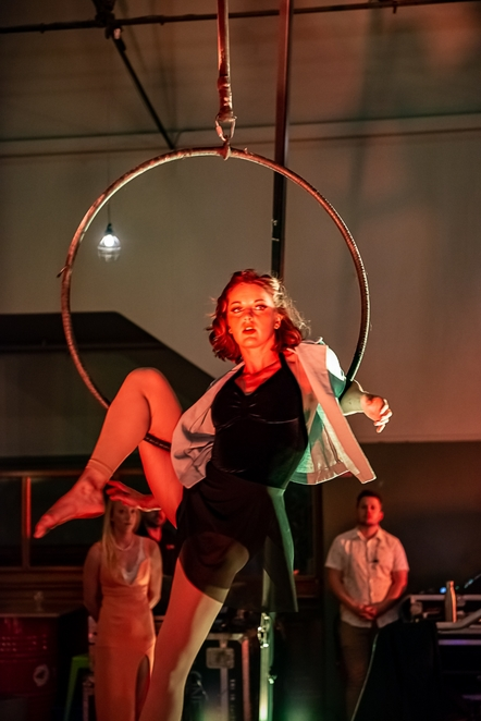 acrobat, trapeze, circus, performance art