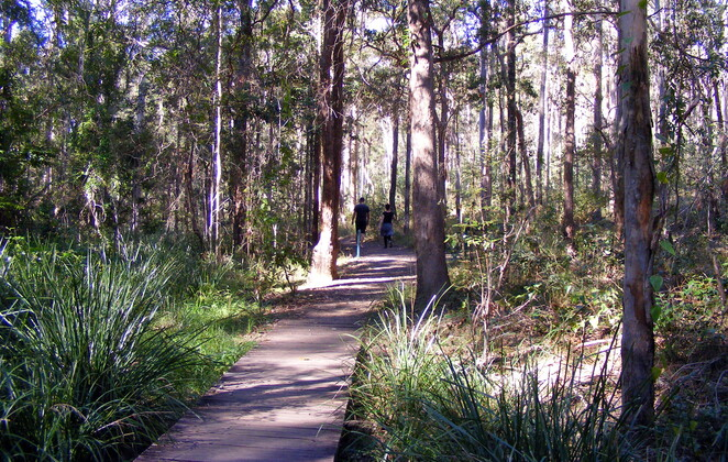 There is a very diverse range of short and long hikes in the Brisbane municipality