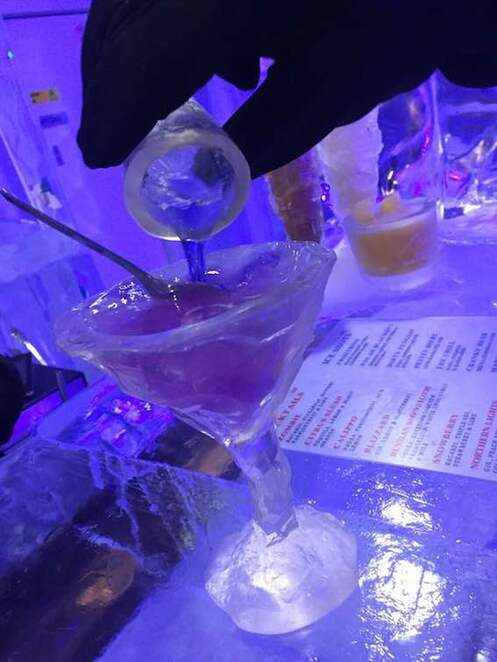 cocktails, melbourne bars, ice bar, unique experience, northern lights