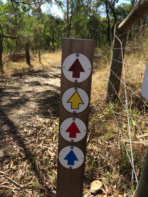 Coloured arrows to guide you along each walking trail