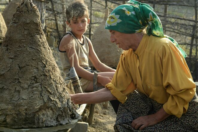honeyland 2020 documentary review, community event, fun things to do, film review, movie review, foreign films, sub titled films, true story, environmental, forgotten land, a story about bees, ljubomir stefanov, tamara koteska, true story, macedonian and turkish film