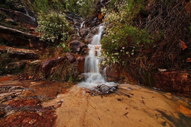 Horsnell Gully Waterfall Adelaide Waterfall Park Hike Weekend Adventure wildlife south australia tourist destination