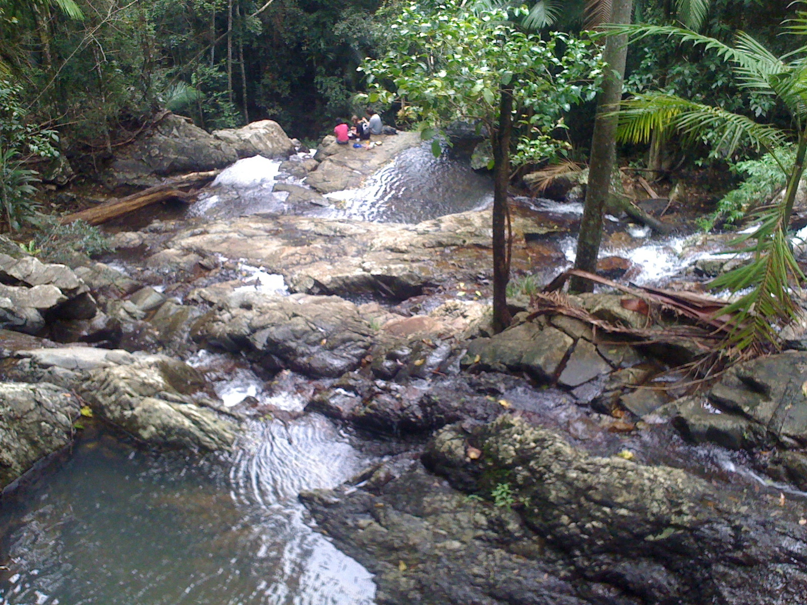 Outings Around Brisbane For Under 20 Mount Glorious