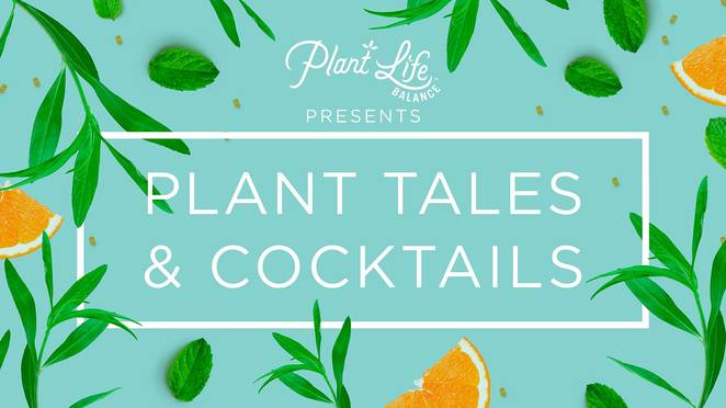 plant tales & cocktails, community event, fun things to do, plant life balance, a loft story, newtown, wonder of plants, health and wellbeing, plant lovers, christmas market, leafy gift ideas, jana stewart, budding microbiologist, chloe joyce illustrations, michael chiem ps40 bar, rachel farag pottery, jane wei a loft story, young henrys, dan the man, seedlip, archie rose