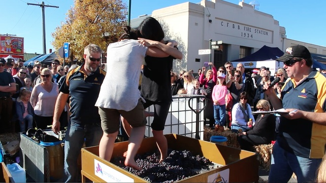 rutherglen grape stomp