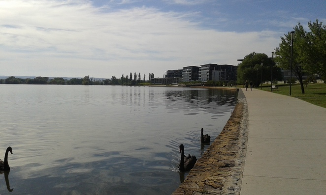 telopea park, bowen park, kingston, barton, canberra, ACT, kingston foreshore, running,