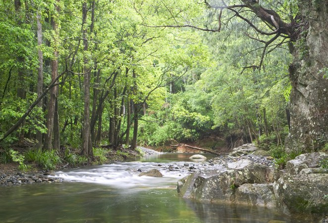 Bellingen, Top 5 NSW Country Getaways