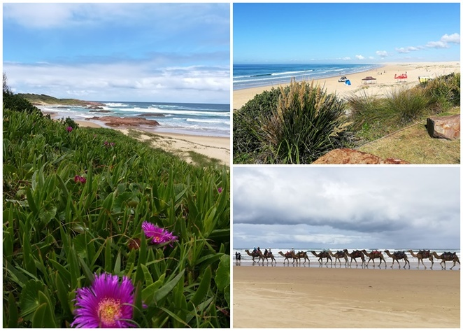 birubi beach, anna bay, beach walks, best beaches for walks, stockton sand dunes, sand dunes, sand boarding, camel rides, quad bike tours, things to do, free, walks, best walks, nelson bay, shoal bay, fingal bay, port stephens, NSW,