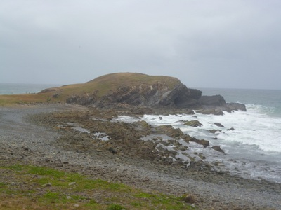 crescent head, little nobby