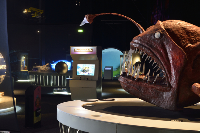 deep oceans, exhibition, scienceworks, museum, melbourne, angler fish