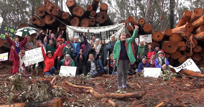 Documentary, nature, environment, climate change, science, protest, Australia