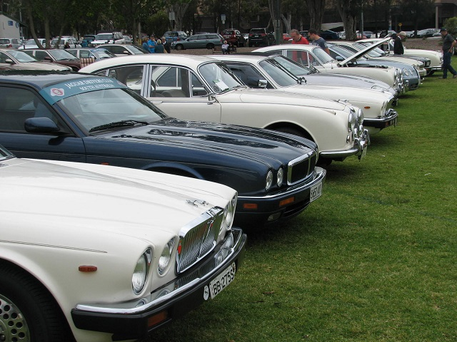 jaguar cars, free event, jaguar e type, jaguar parts, jaguar f type, in adelaide, car meet, jaguar drivers club, people's choice awards