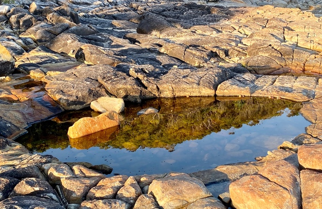 Rock pool reflections at Noosa Heads National Park