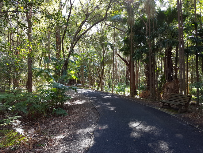 North Coast Regional Botanic Gardens, Coffs Harbour, Picnic, family outings,