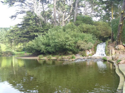 serenity at golden gate park