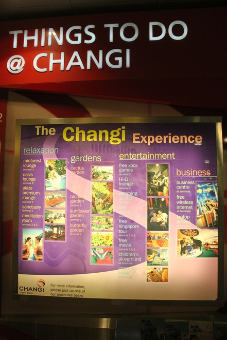 things to do in changi airport, things to do at changi airport, changi airport sg, things to do in singapore airport, changi airport things to do, singapore airport things to do, changi airport tour