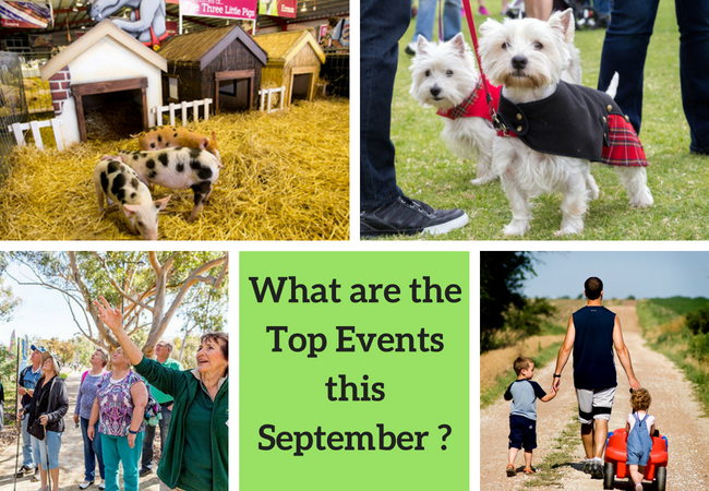 Top September Perth events