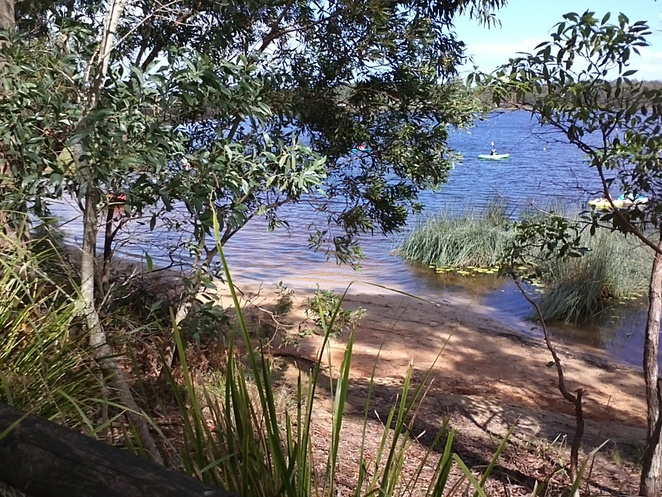 tranquil, beach, safe swimming, bush walking, kayaking, children's play area, picnic, toilets